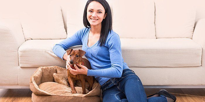 Tips for Dog Owners Looking for an Apartment